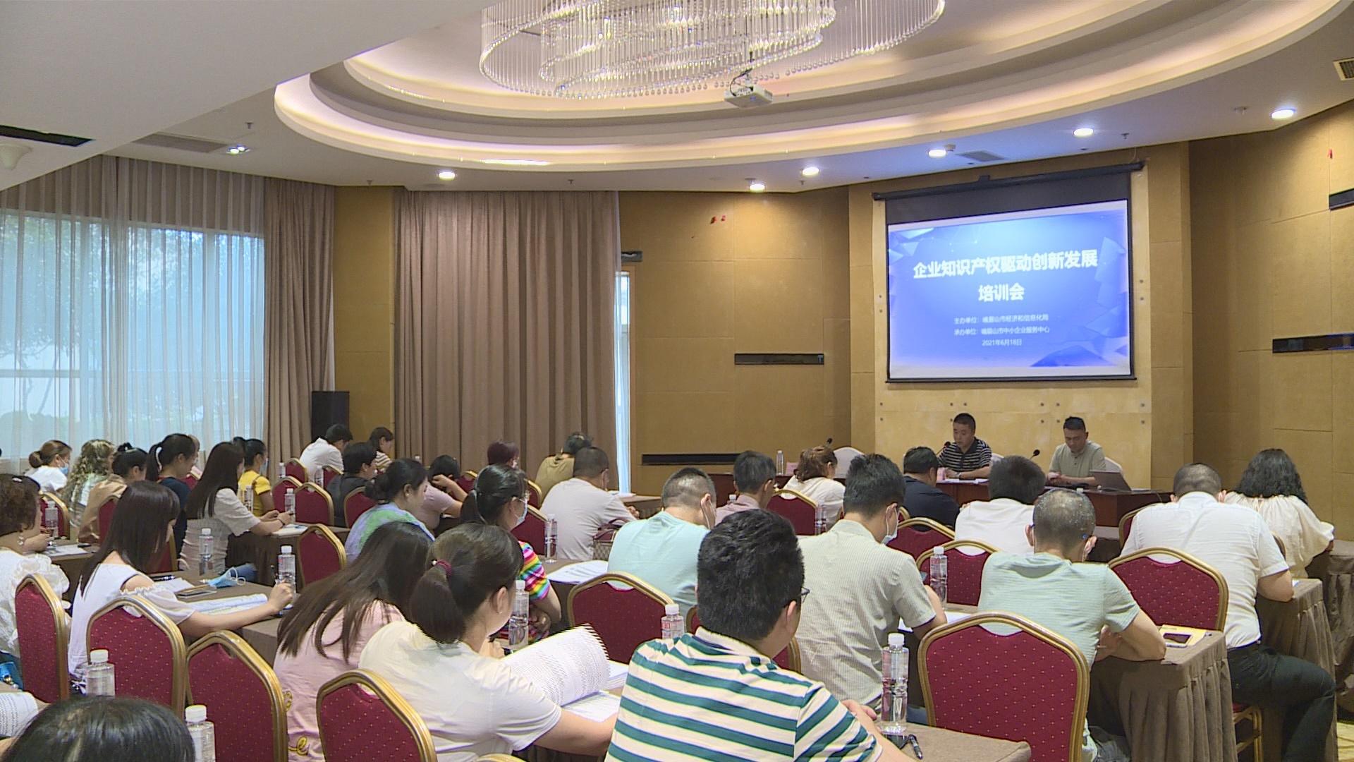 峨眉山市企业知识产权驱动创新发展培训顺利开展